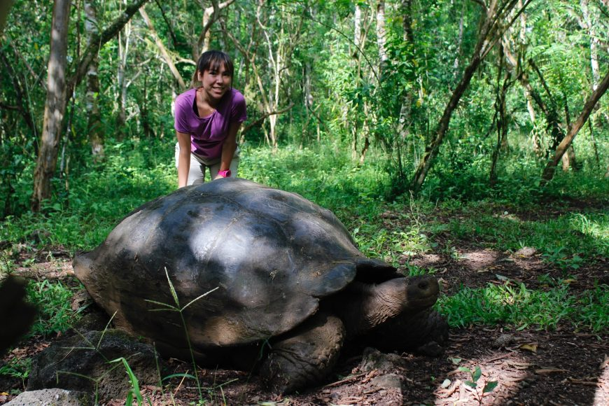 Senior Alissa Vasper poses next to a giant male tortoise.